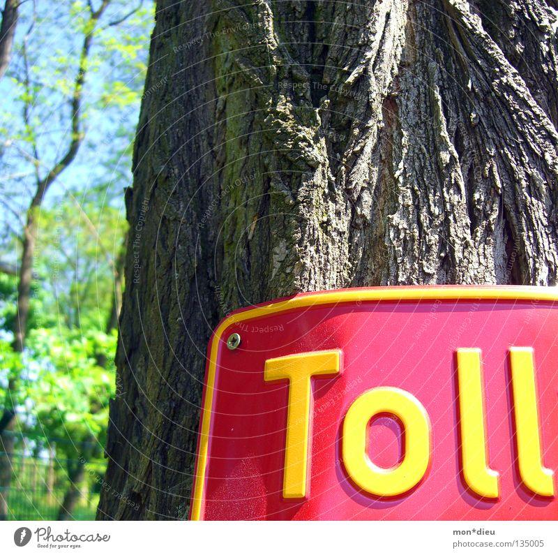 ! grün Baum rot Freude Blatt gelb Schilder & Markierungen Hinweisschild Baumstamm Schraube Baumrinde Prima Redewendung Blechschild
