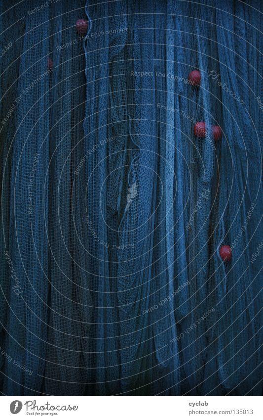 Vernetzt (3. Fang) blau rot Meer Erholung dunkel grau Küste See Wasserfahrzeug orange Arbeit & Erwerbstätigkeit Seil Fisch Reinigen Netz geheimnisvoll