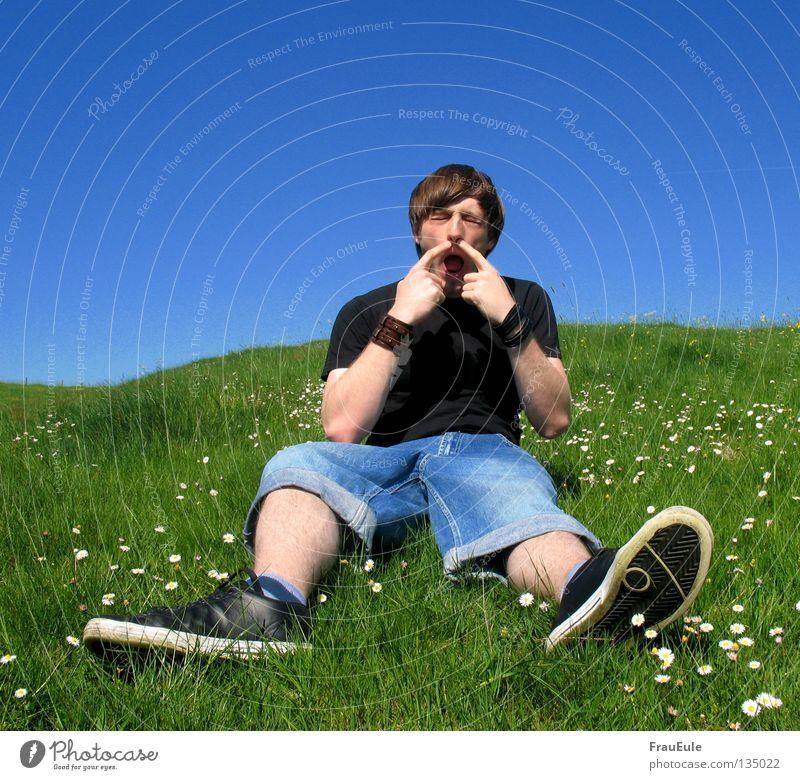 Et juckt Himmel Mann blau grün Sommer Blume Wiese Berge u. Gebirge sitzen Nase Finger Hügel Löwenzahn Jahreszeiten Gänseblümchen Allergie