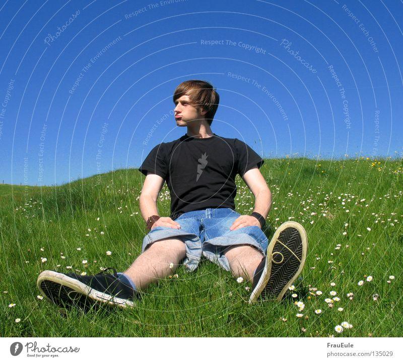 sitzen und groß fühlen Sonnenstrahlen Wiese grün Blume Gänseblümchen Löwenzahn Hügel Sommer Jahreszeiten Mann Wange stark Hochmut Sinnestäuschung sun sunshine