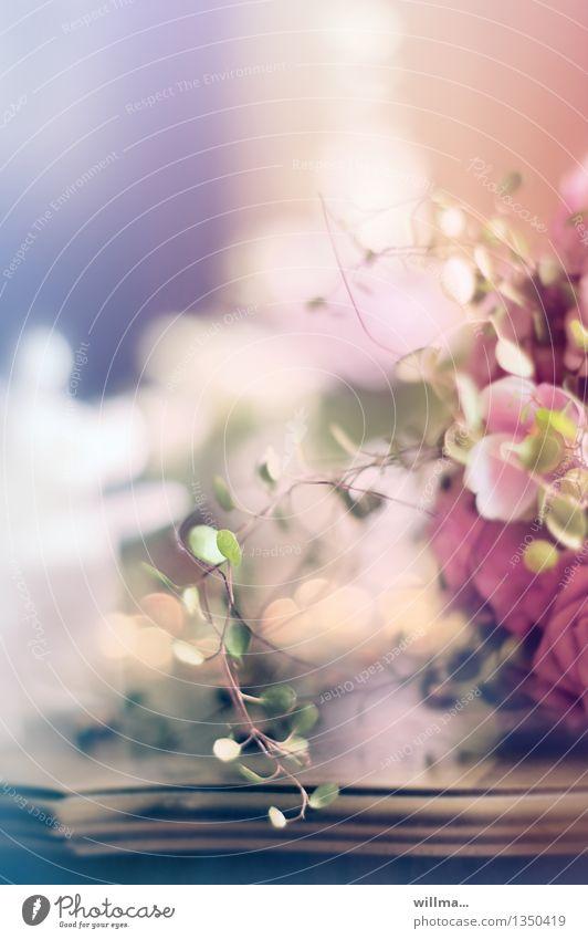 vorspiel Tod Feste & Feiern rosa Dekoration & Verzierung Kirche Hochzeit zart Blumenstrauß Vorfreude Valentinstag festlich traumhaft Beerdigung Antiquität Blumenstengel Sarg