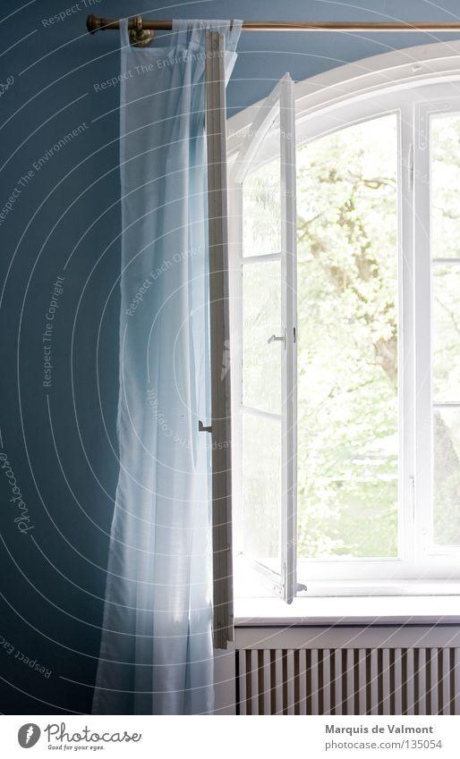 Lichtblick Sommer Fenster Gebäudereiniger Frühjahrsputz offen Fensterscheibe Glasscheibe Leitersprosse Strebe Wand Vorhang Stoff weiß Heizkörper Dingenskirchen