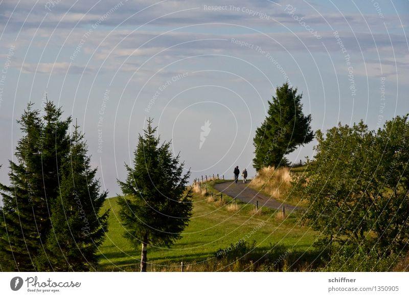 Soon Mensch Freundschaft Paar Partner 2 Umwelt Natur Landschaft Baum Wiese Hügel grün Wege & Pfade Himmelsstürmer Tanne Sträucher Weide Wolken Schwarzwald