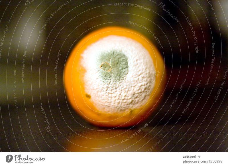 Verschimmelte Orange ist selten von Vorteil Frucht Vitamin Zitrusfrüchte Gesundheit Gesunde Ernährung Gesundheitswesen Krankheit Haltbarkeit mindesthaltbarkeit