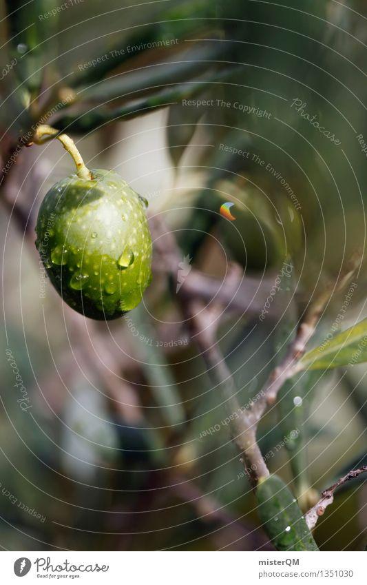 Italian Rain. Kunst Kunstwerk ästhetisch Oliven Olivenbaum Olivenöl Olivenblatt Olivenernte grün mediterran Regen frisch Ernte reif lecker Italien Farbfoto