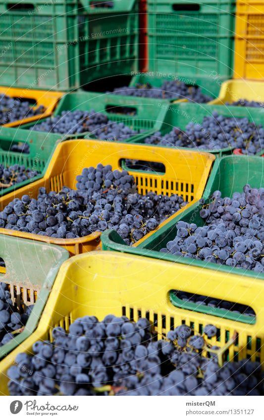 Sangiovese II Kunst Kunstwerk ästhetisch Wein Weinbau Weintrauben Weinlese Weingut Ernte Kiste einpacken viele blau Stapel Farbfoto mehrfarbig Außenaufnahme