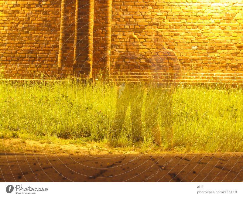 Imaginär anwesend Justizvollzugsanstalt Mauer Nacht gelb Langzeitbelichtung Geister u. Gespenster Hologramm durchsichtig Wiese Gras Steinboden Backstein Frau