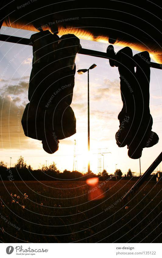 FLEDERMAUSLAND Fledermäuse Gegenlicht Schutzanzug Arbeitsbekleidung Anzug Stab hängen Erholung Freundschaft Hund Flughunde Physik Arbeitsanzug