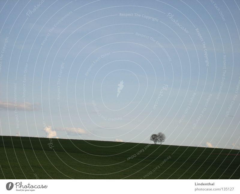 Einsam Zweisam Himmel Baum Einsamkeit Wiese Zusammensein Feld Horizont paarweise Verbundenheit Ehe