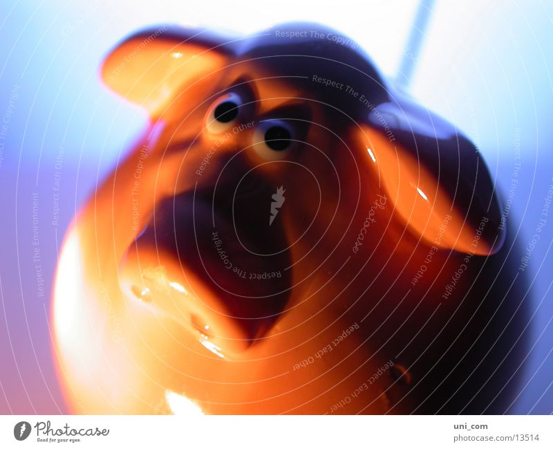 glücksschwein Glück Spielzeug Schwein Mensch Keramik