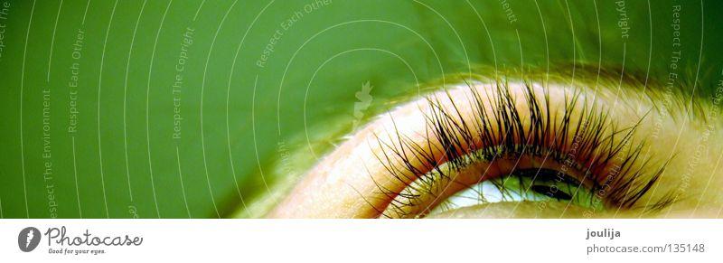 eye Pupille See Makroaufnahme Nahaufnahme Auge eye lashes face Blick Momentaufnahme