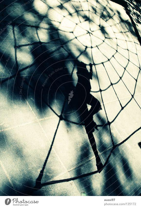 Arachnoid Kind Spinne Spielplatz