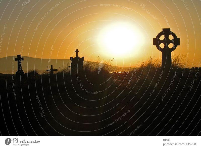 Abendempfindung Sonne Meer ruhig gelb Tod Leben Herbst Gras Wege & Pfade Religion & Glaube Stimmung orange Zufriedenheit Wind Rücken Europa