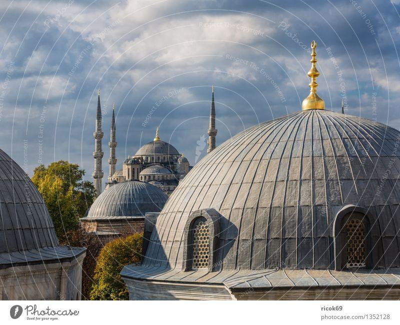 Moschee Ferien & Urlaub & Reisen Stadt Baum Architektur Gebäude Religion & Glaube Tourismus Idylle Turm Bauwerk Wahrzeichen Sehenswürdigkeit Säule Kuppeldach