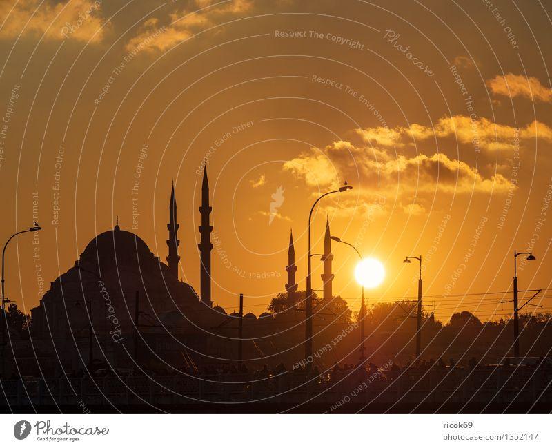 Moschee Ferien & Urlaub & Reisen Lampe Stadt Bauwerk Gebäude Architektur Sehenswürdigkeit Wahrzeichen gelb Romantik Idylle Religion & Glaube Tourismus Istanbul