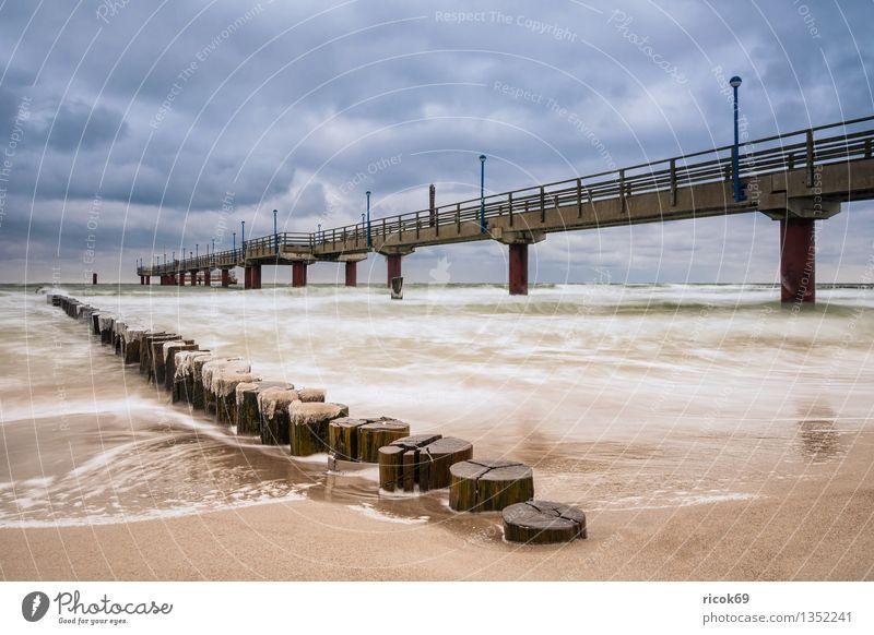 Zingst Ferien & Urlaub & Reisen Strand Winter Natur Landschaft Wasser Wolken Küste Ostsee Meer Architektur Sehenswürdigkeit kalt blau Idylle ruhig Tourismus
