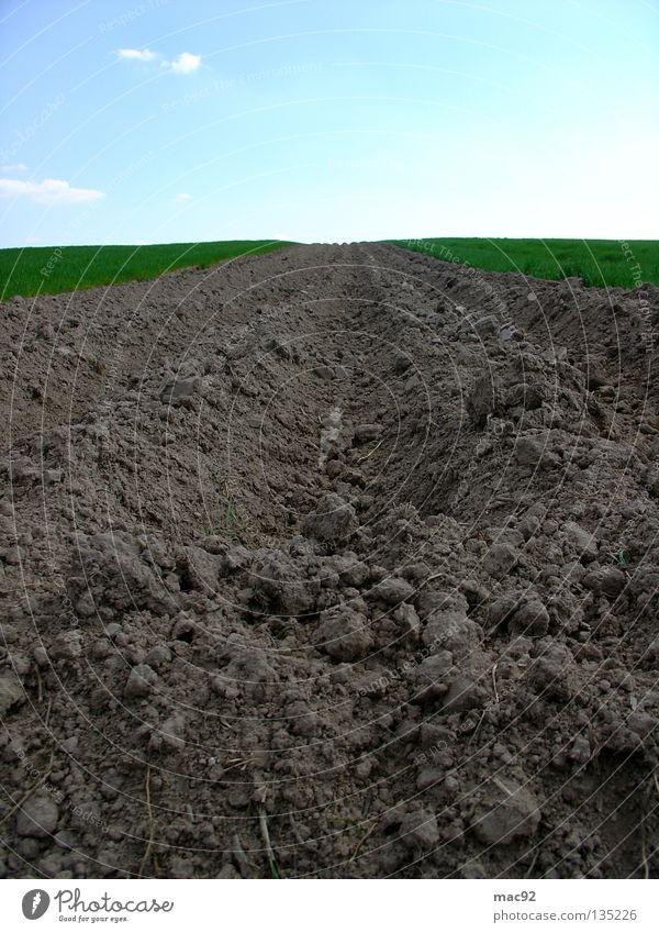 Einsames Feld Himmel grün Sommer Wiese Frühling braun Feld Traktor