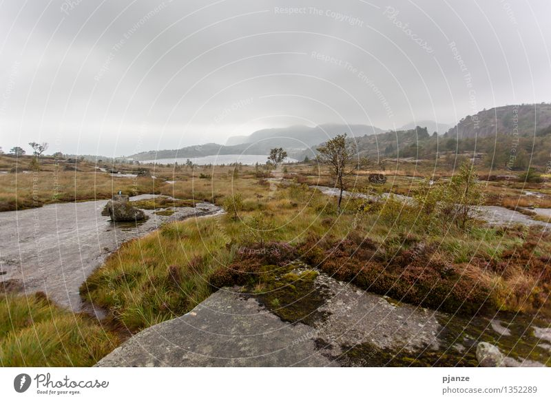 Herbst Natur Baum Erholung Landschaft Wolken Berge u. Gebirge Gras Küste See Felsen Regen Nebel Wellen wandern Wind