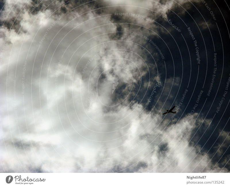 Freiheit Himmel blau weiß Freude Wolken oben Luft Flugzeug Luftverkehr Zukunft Flügel Technik & Technologie verstecken Flucht hinten