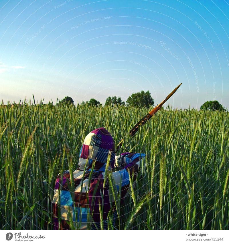 Auf der Lauer Getreide Jagd Mensch Himmel Wolken Baum beobachten blau grün violett weiß gestreift zyan Weste Kapuze Jäger Waffe Bogenschütze Farbfoto