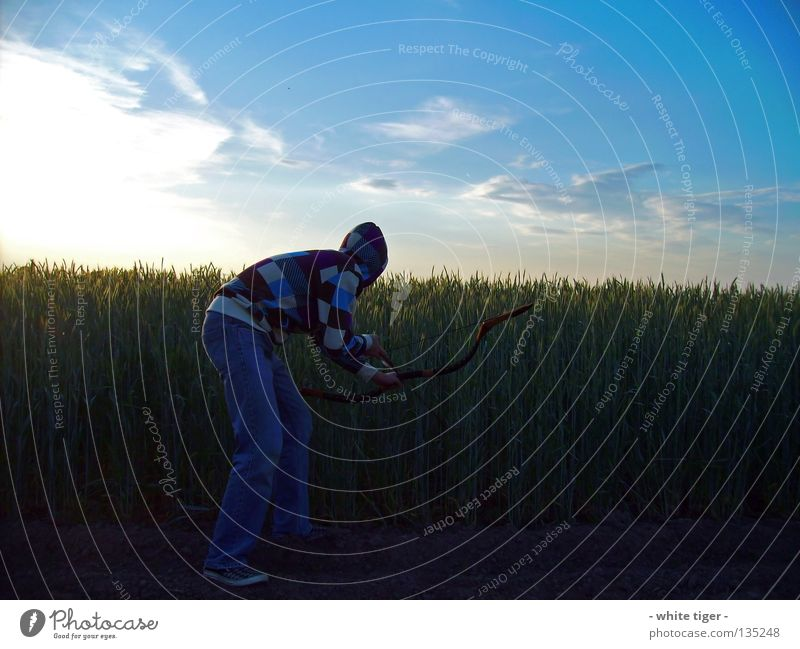 Geduld Mensch Himmel blau weiß grün Baum rot Sonne Wolken gelb beobachten Schönes Wetter violett Getreide Jagd Pfeile