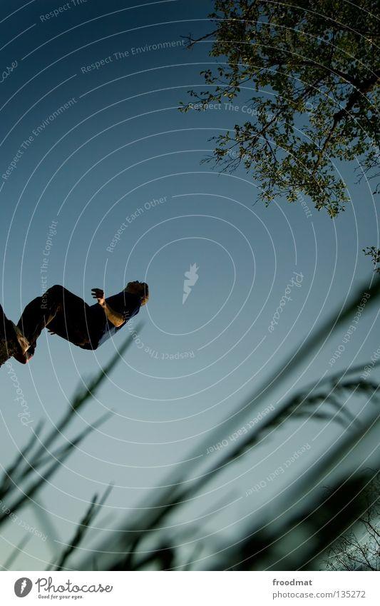 ready to Himmel Jugendliche Freude Erholung Gras Bewegung springen Zufriedenheit elegant frei Flugzeug ästhetisch Luftverkehr verrückt Aktion Coolness