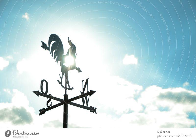 Schönwetterhahn Himmel blau schön weiß Ferne glänzend Wetter Tourismus leuchten Dekoration & Verzierung elegant Kraft Schilder & Markierungen Wind Klima Schönes Wetter