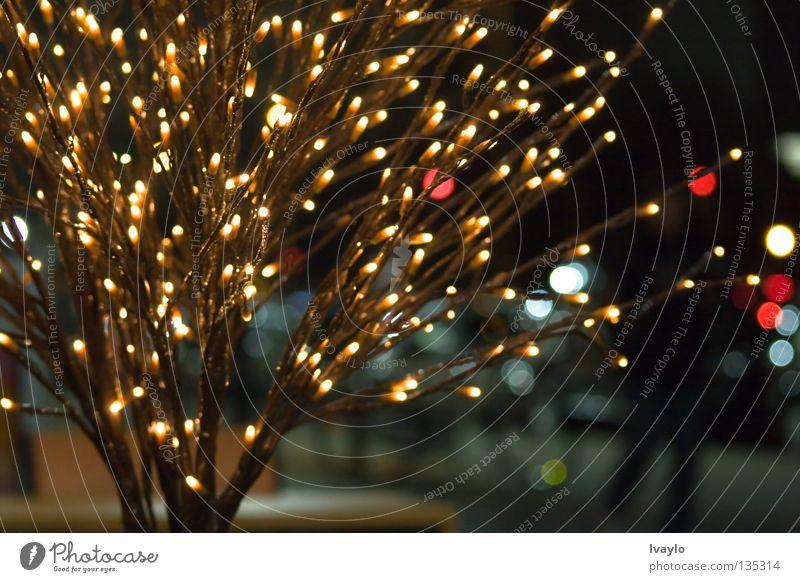 Light tree Weihnachten & Advent Straße Dekoration & Verzierung Reaktionen u. Effekte gestellt festlich filigran
