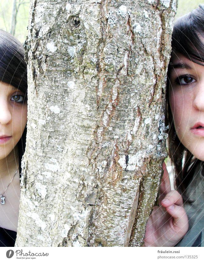 MBM Hand Baum Auge Mund Nase Freundlichkeit Baumrinde