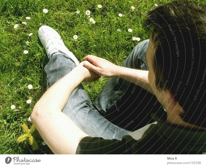 Alles Gute zum 30. Mann grün Blume Erwachsene Wiese Gras Traurigkeit Denken Frühling träumen Beine Arme warten Sehnsucht Gedanke Fragen