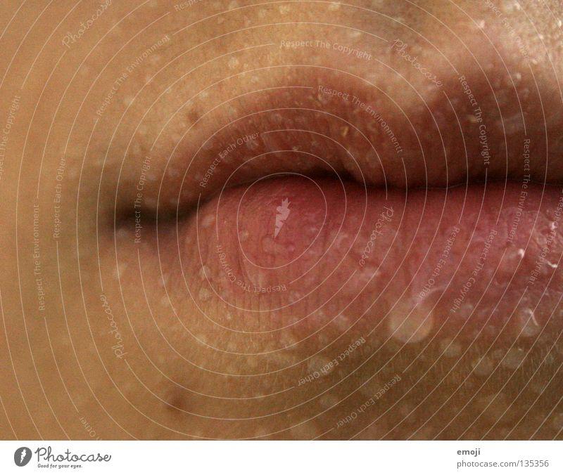perlend feminin Stil Regen glänzend Haut Wassertropfen Mund nass süß nah Lippen Kosmetik Sportveranstaltung Konkurrenz feucht Sinnesorgane