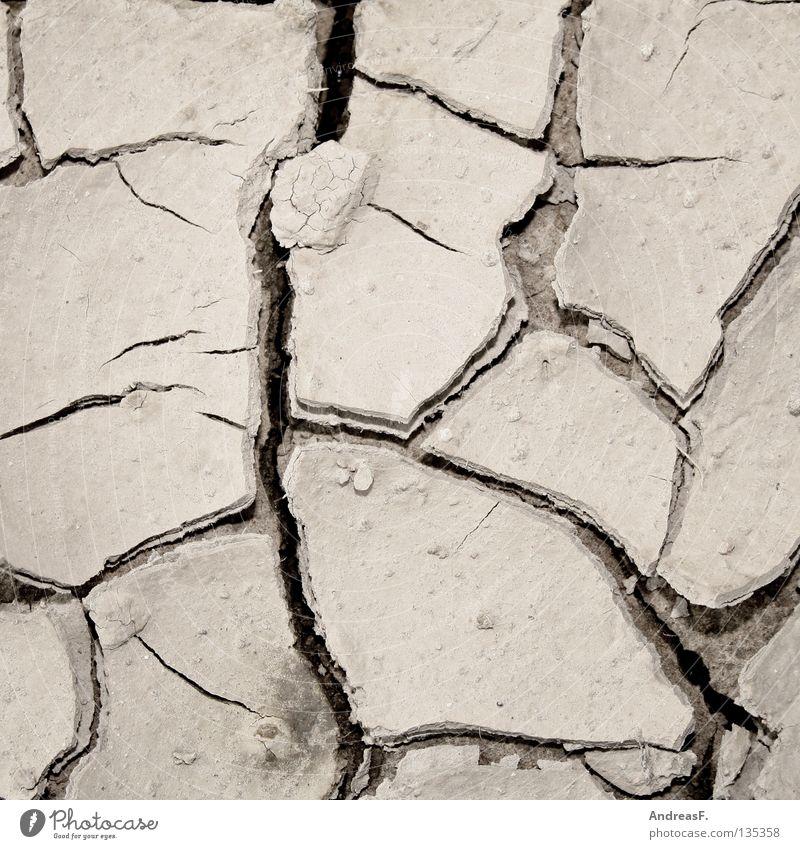 Trockenheit Sommer Wärme Sand Feld Erde Physik Landwirtschaft Ernte trocken Riss Dürre Durst Klimawandel getrocknet Erosion durstig
