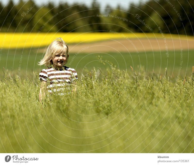 hide and seek Natur grün Mädchen Frühling Wind Kind verstecken Raps Hafer