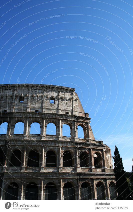 Gebrochener Koloss Farbfoto Außenaufnahme Textfreiraum oben Sonnenlicht Vorderansicht Bildung Kunst Kultur Bauwerk historisch kaputt Rom Europa Italien antik