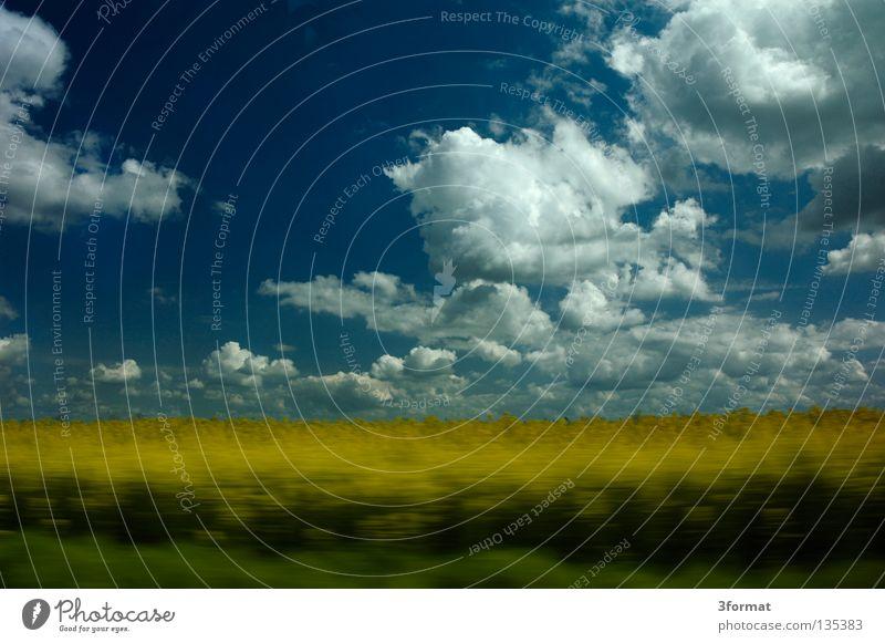 speed02 Himmel grün Baum Ferien & Urlaub & Reisen Sommer Freude Wolken gelb Landschaft Straße Freiheit Bewegung Gras Frühling Horizont Kraft