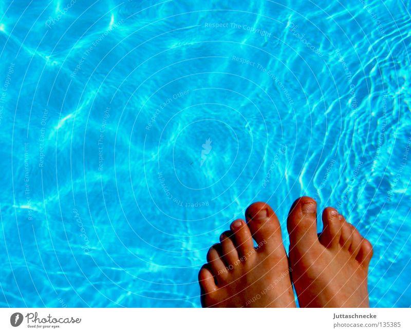 Neeeeeeee Wasser blau Sommer Freude kalt Garten Fuß Eis Gesundheit nass Schwimmbad Schwimmen & Baden türkis frieren Sonnenbad