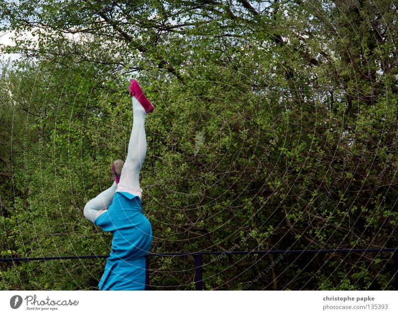 plümerant Frau blau Erwachsene feminin Beine Kunst Tanzen rosa hoch Gesäß Fitness skurril trashig vertikal Strumpfhose Balletttänzer