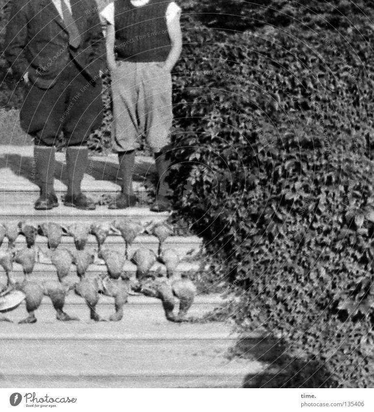 Die Enten-Wehr hatte wieder ganze Arbeit geleistet. Fleisch Ernährung Jagd Erfolg maskulin Mann Erwachsene Sträucher Treppe Verkehrswege Bekleidung Hose Vogel