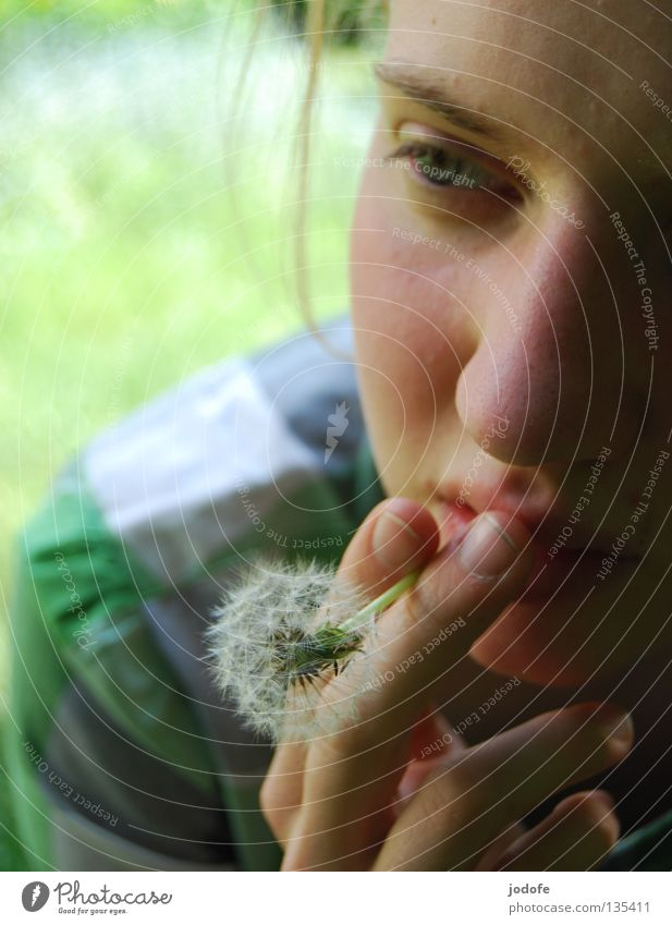 Rauchen gefährdet die Gesundheit! Blume Löwenzahn Frau Mädchen feminin Finger Hand Hemd Bluse vergangen beenden Abhängigkeit ruhig Mensch Auge Nase Mund