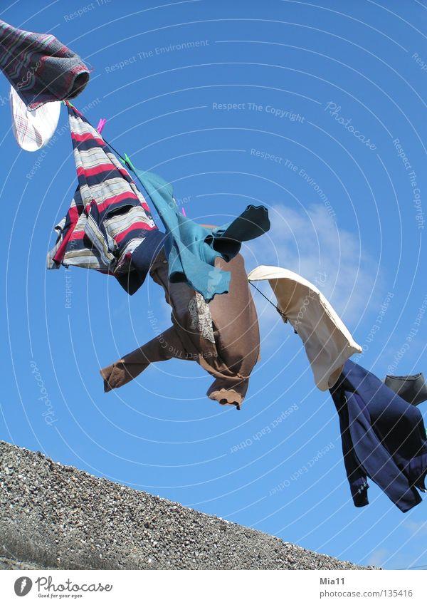 An der Leine Wäsche Wäscheleine Tracht trocknen Sommer Physik Bekleidung mehrfarbig T-Shirt Pullover Weste Jacke Schnur aufhängen Haushalt Wind Wärme Freiheit