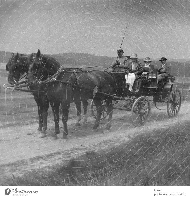 Pole Position Spielen Ausflug Reitsport Frau Erwachsene Mann Verkehr Pferdekutsche dunkel Gesellschaft (Soziologie) Zaumzeug ländlich Landweg Sandweg Peitsche
