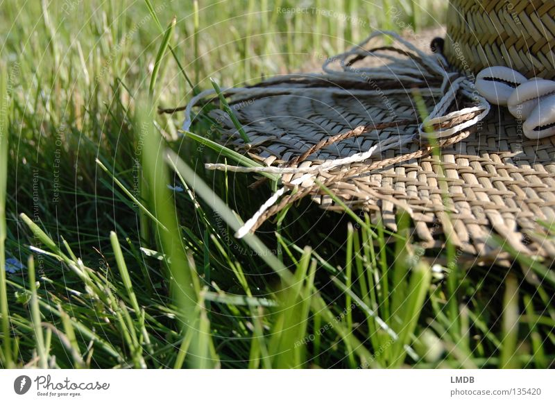 kein Bett und kein Kornfeld Strohhut Muschel Gras Spagat Wiese grün braun beige Erholung Sommer Picknick Pause wandern Freizeit & Hobby genießen heiß Kühlung