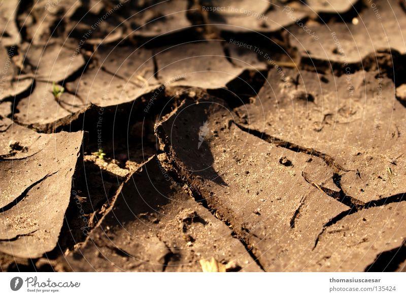 Lebensfern Riss Vulkankrater trocken braun dunkel ungemütlich Müdigkeit Staub Physik Wüste Bodenbelag Tod hell karr Erde Sand bröslig Wärme Schatten errosion
