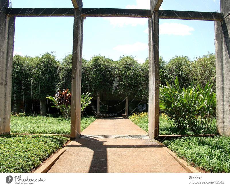 Ranz & Reiz, Brasilia Universidade Brasília Wurm grün Pflanze Beton Architektur Studium Niemeyer
