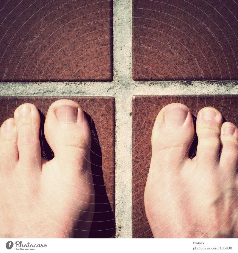 Mutation! Zehen Genetik Genmanipulation DNA fließen Muster 3 Gefäße maskulin Fuge lang hässlich schön Ekel Zehennagel Nagel Mann obskur Freude mutation Fuß