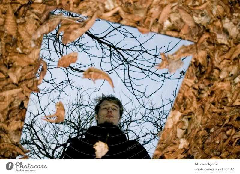 Herbstreflexionen Mann Blatt Herbst Wand grau braun verrückt Bild Vergänglichkeit Spiegel Gemälde Ruhestand parken Selbstportrait mystisch Spiegelbild