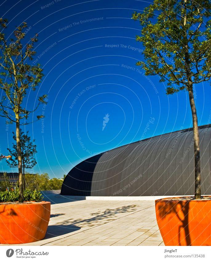wechselspiel Himmel Baum grün blau rot modern Platz rund Dach Schönes Wetter einzeln attraktiv mediterran Blumentopf gekrümmt