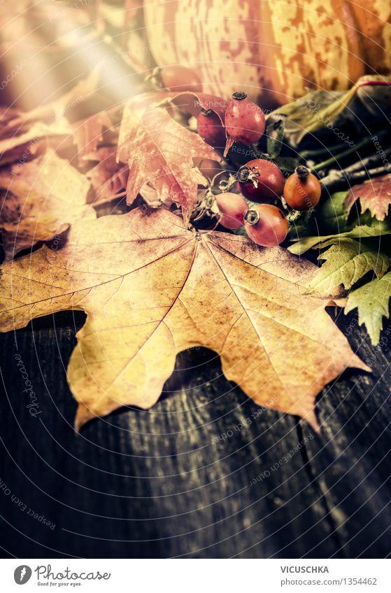 Herbststimmung auf dem Gartentisch Natur Pflanze Blatt Haus Herbst Innenarchitektur Stil Hintergrundbild Garten Feste & Feiern Stimmung Design Dekoration & Verzierung Tisch retro Stillleben