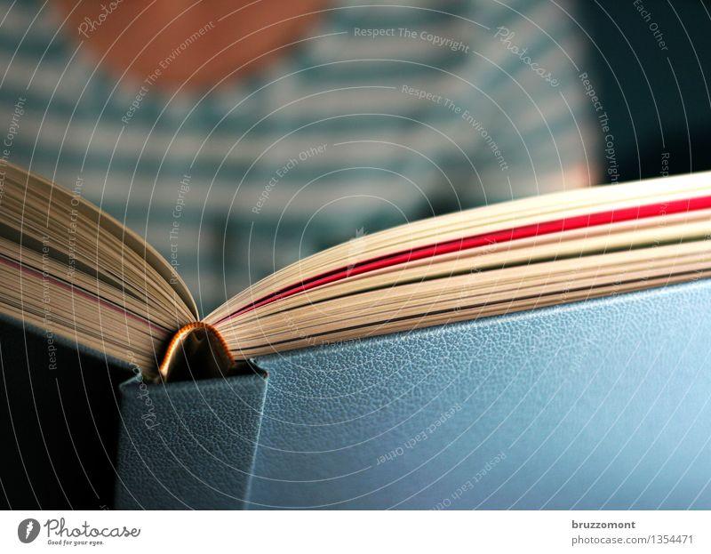 Lernen und Popernen Bildung Erwachsenenbildung lernen Berufsausbildung Studium feminin Frau Printmedien Buch lesen blau Erholung vorlesen Farbfoto Innenaufnahme
