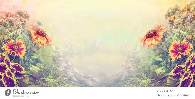 Gartenblumen an verschwommenem Natur Hintergrund Pflanze Sommer Blume Landschaft Blatt Blüte Herbst Frühling Stil Hintergrundbild rosa Park Design Nebel